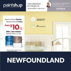 Newfoundland Flyer cover