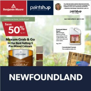 Cover of Newfoundland Flyer